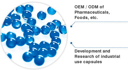 OEM / ODM of Pharmaceuticals, Foods, etc. / Development of industrial use capsules